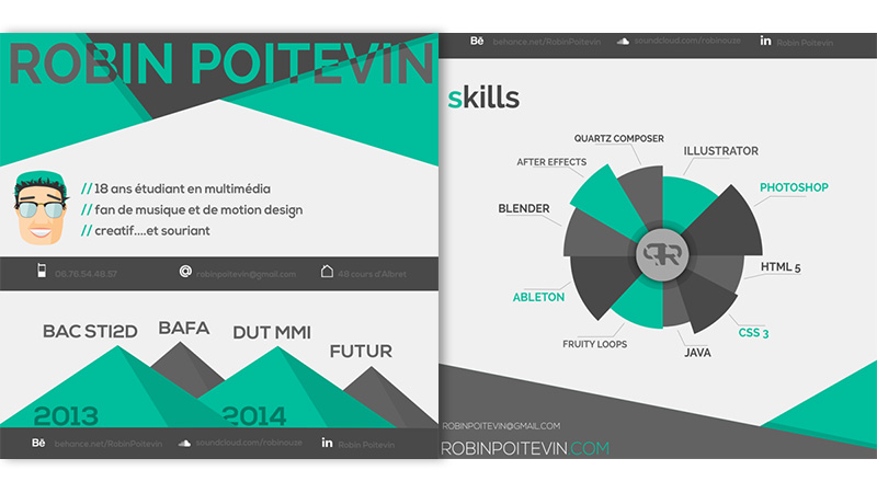 14-infographic-cv-by-robin-poitevin