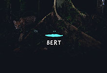 Bert branding & website作品包装欣赏